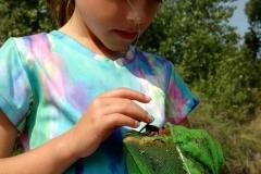 Talking Stones and Fossil Bones Girl Examining Net